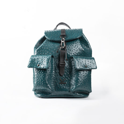 BACKPACK WITH HOOK - GREEN
